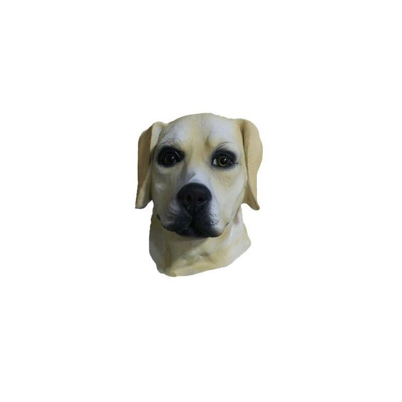 Hunde Maske Labrador