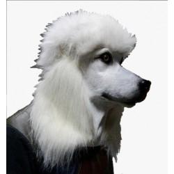 Faschingsmaske Hund Pudel