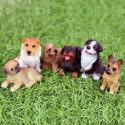 Miniaturfiguren von Rassehunde