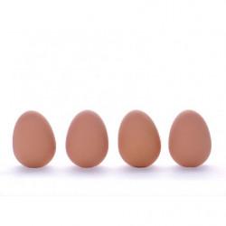 Realistisch aussehendes Ei aus Gummi