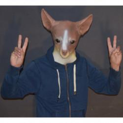 Hunde Maske Chihuahua