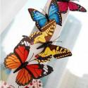 12 Kühlschrankmagnete Schmetterlinge