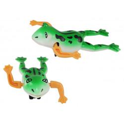 Schwimm Frosch zum Aufziehen