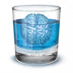 Eiswürfelform Gehirn  Brain