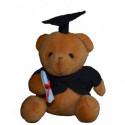 Graduation Geschenk Graduation Bär