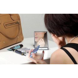 iPad2 spiegel mirror