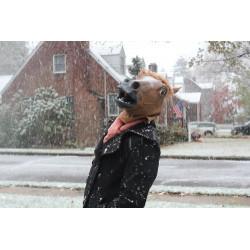 Pferdekopfmaske aus Latex Pferdemaske